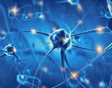"""大脑""""音量旋钮""""有助于治疗神经系统疾病"""